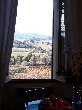 "Agritourism ""The Vineyard"" : vista"