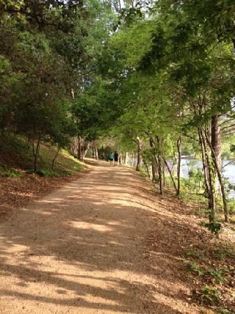 Lady Bird Lake Hike-and-Bike Trail : morning