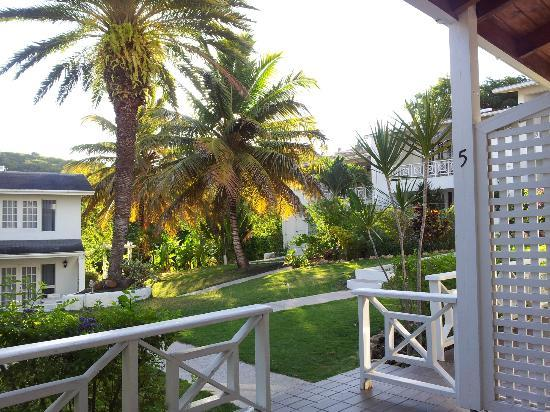 Dickenson Bay Cottages: View from cottage #5 (sun rises over the palms)