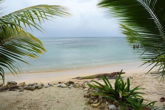View of beach from Hotel Utila