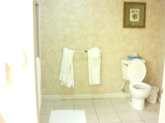 Vacation Village in the Berkshires: Bathroom in one bedroom unit
