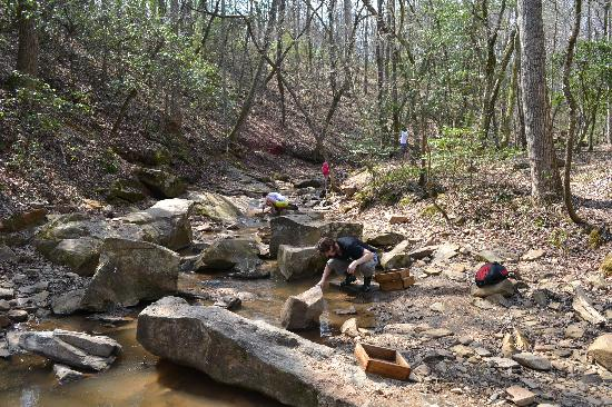 Emerald Hollow Mine: The Creek