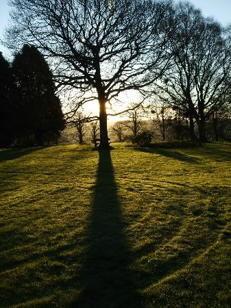 Moryd Restaurant, Mansion House Llansteffan: Went for a walk early morning the views over the lawns were lovely