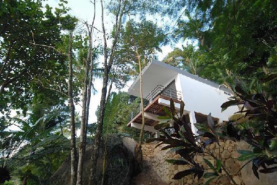 Asalem: Eco Suite from below