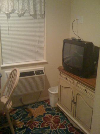 Bradford Inn: Modest television and air conditioning unit in our room