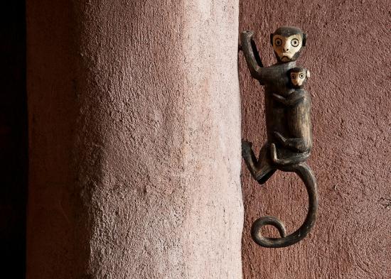 Yacutinga Lodge: detalles del hotel