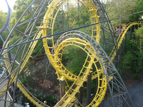 Loch Ness Monster Coaster Try The First Seat Picture Of Busch Gardens Williamsburg