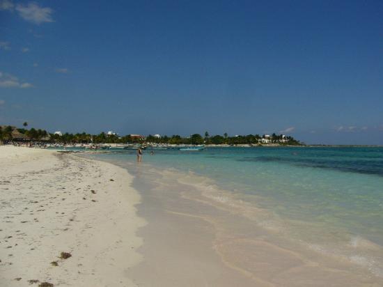 Akumal Beach: Akumel Beach - white sandy beach, blue turquoise waters, swim with turtles 150 ft off the beach!