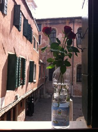 Hotel Citta di Milano: my birthday roses and view