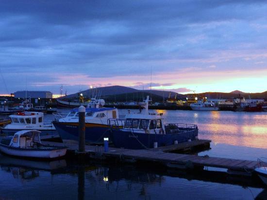 Murphy's B & B: Beautiful Dingle Harbour at sunset