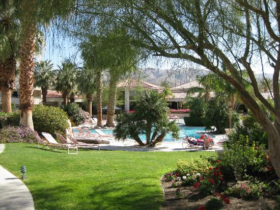 Miracle Springs Resort and Spa: Greenery by the pool at Miracle Springs Hotel and Spa