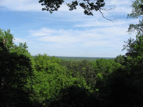 Torreya State Park: View From Lookout Area @ Torreya Campground
