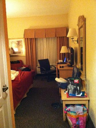 Holiday Inn Express Clermont: room