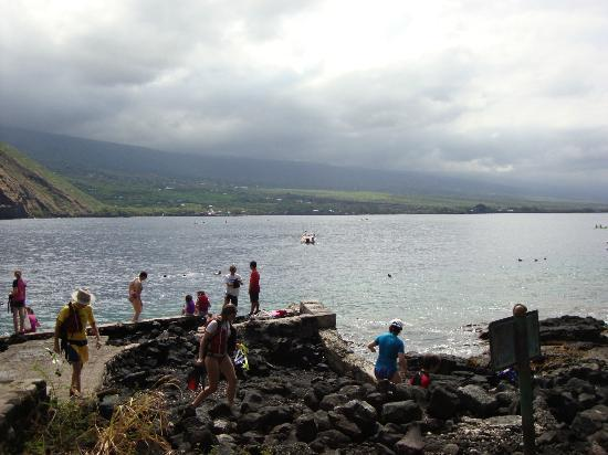 Hawaii Pack and Paddle Day Tours: Swimmers enjoying the day at Captain Cook Monument