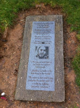 Kurt Cobain Memorial Park: part of the memorial