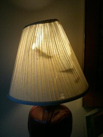 La Quinta Inn Birmingham / Cahaba Park South: Lamp shade that lost the boxing match.