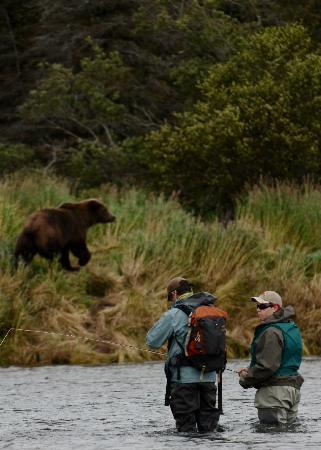 Alaska Rainbow Lodge : Fishing