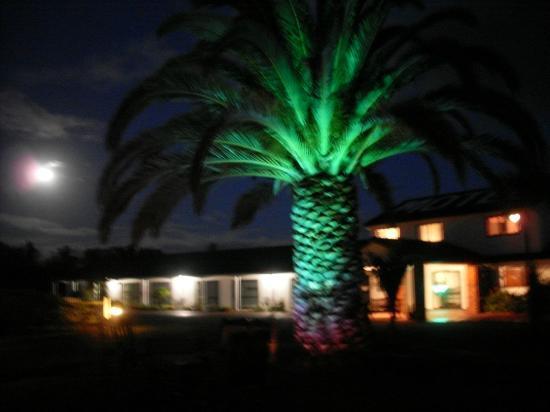 Norfolk Motel and Campervan Park: Entranceway
