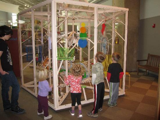Explora Science Center and Children's Museum of Albuquerque: Marble machinery