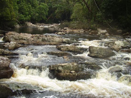 MM Adventure Travel and Discovery : Tahan River in Taman Negara