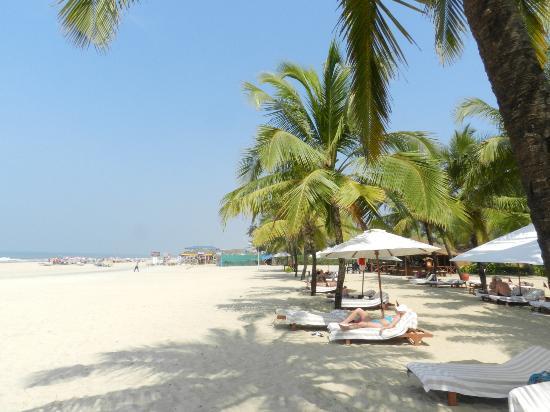 The Leela Goa: la plage de l'hôtel