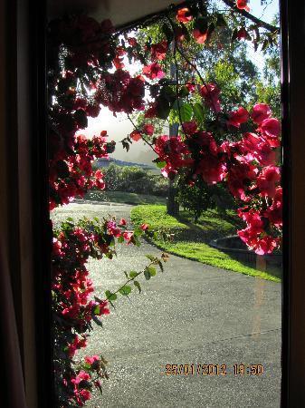 Retreat Inn Bed & Breakfast: driveway to accommodation