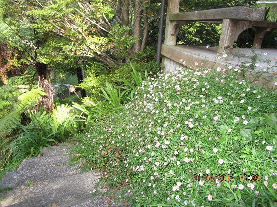 Retreat Inn Bed & Breakfast: steps down to ravine