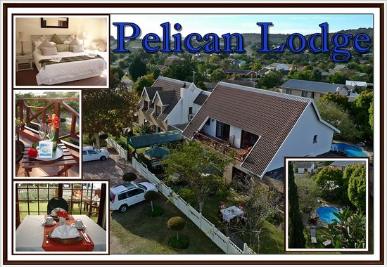 Pelican Lodge Guesthouse