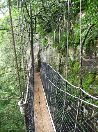 Cathkin Park, Sudáfrica: hang bridge between platforms