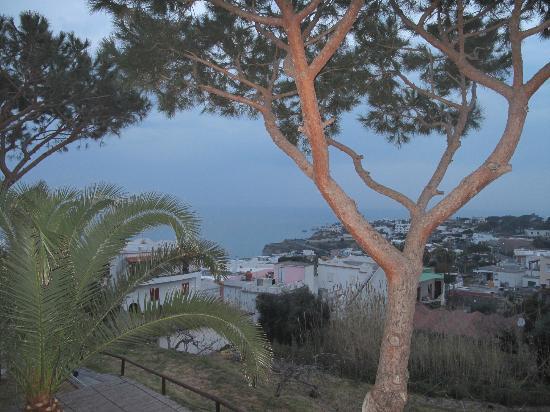 Hotel Parco Maria Terme: vista dalla camera