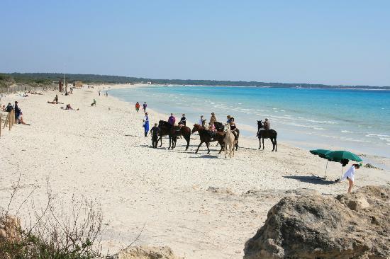 Playa de Es Trenc: Playa Es Trenc en Mallorca