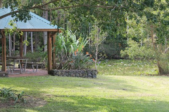 Noosa Botanic Gardens: 2