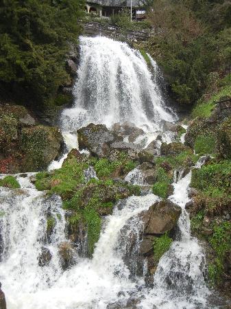 St. Beatus Hoehlen : Waterfall at St. Beatus-Hohlen.