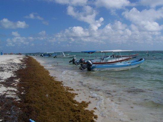Puerto Morelos Charters