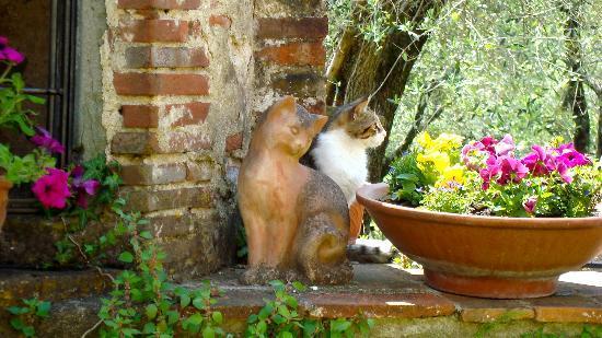 In de tuin bij Agriturismo I Pitti