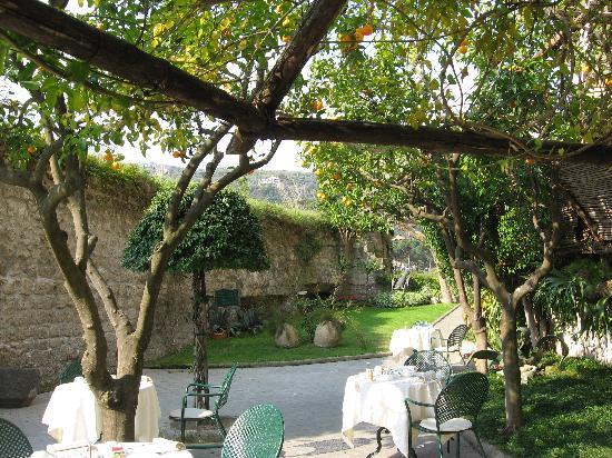 Antiche Mura Hotel: Garden view off breakfast room.