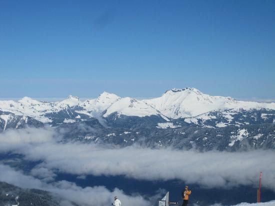 Absolute Alpine : View up the mountain over Samoen