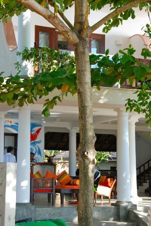 Kingfisher Hotel: bâtiment vu de la mer