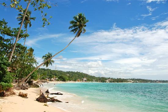 Kingfisher Hotel: plage de unawatuna