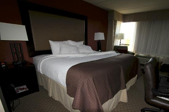 Holiday Inn Pensacola-N Davis Hwy: bedroom