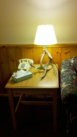 Northwoods Inn & Suites: Horn Lamp