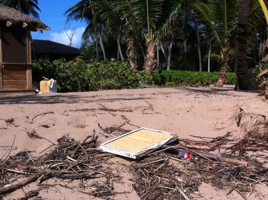 The St. Regis Bahia Beach Resort: disgusting beach - littered with debris fir three straight days