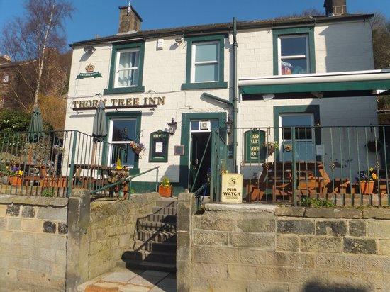The Thorn Tree : Small, friendly pub.