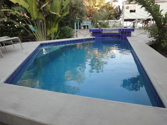 Amanda's Place: Pool