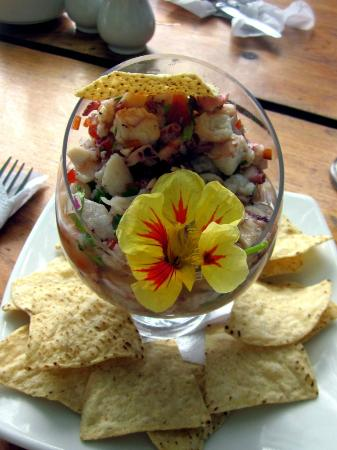 Tabanuco: Seafood Ceviche Mixta (a meal in itself)