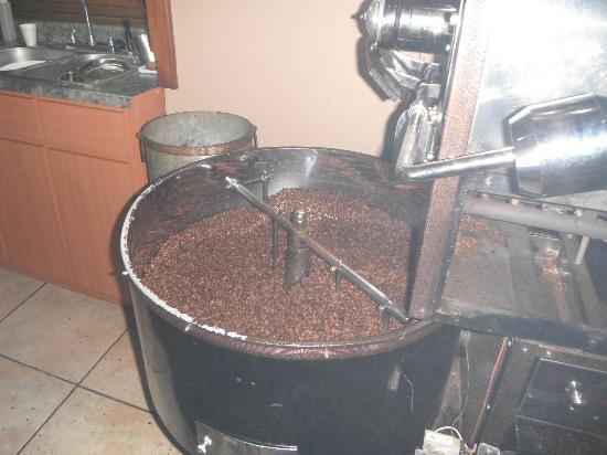 San Sebastian, Puerto Rico: area donde venden cafe y te regalan un obsequio