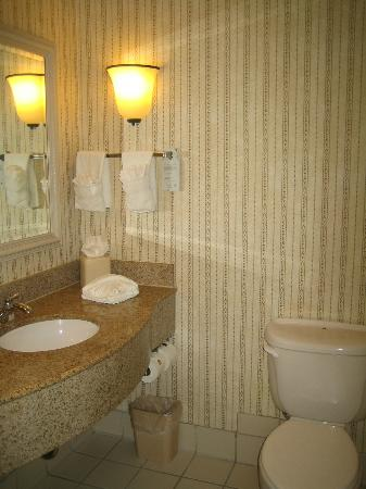 Hilton Garden Inn Minneapolis Eden Prairie: Bathroom could have been from an old luxury hotel