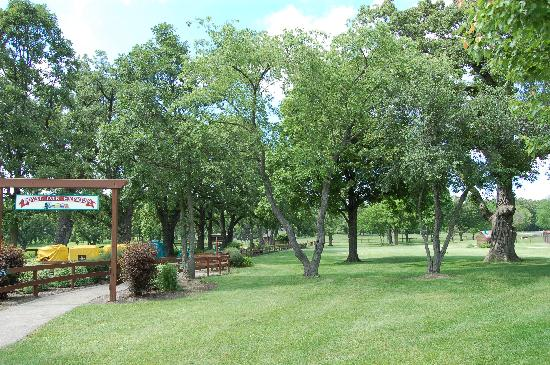 Royal Oak Farm Orchard: Entertainment Area