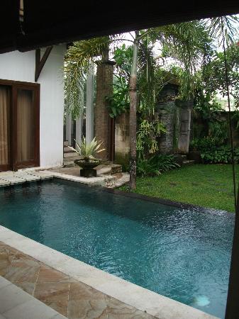 Villa Kania: pool