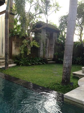 Villa Kania: outdoor area